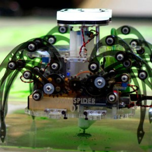 the Terra Spider autonomous robot