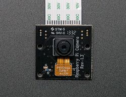 Raspberry Pi NoIR Camera Module