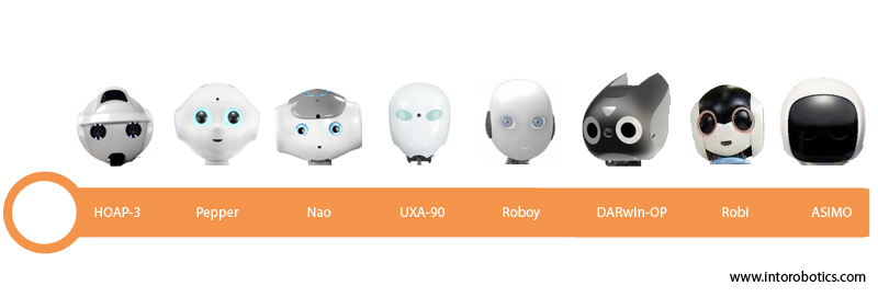 Interactive robot heads