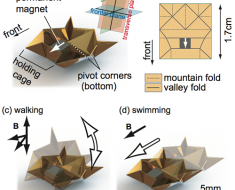 Origami robot structure (image credit)