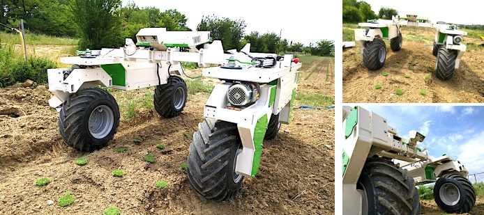 Robotic weeder for large vegetable farms