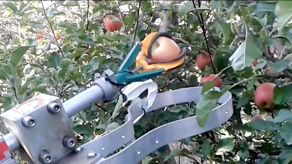 Robotic Fruit Harvester